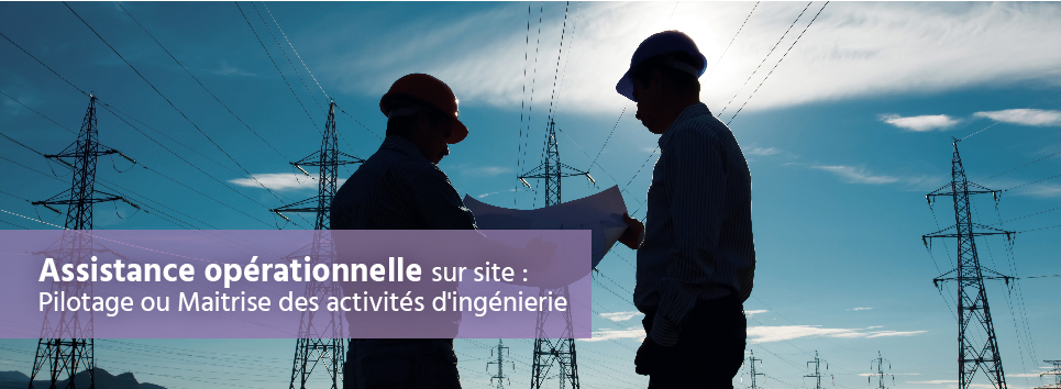 Gestion de projets industriels complexes: sous-traitance et ensemble de services